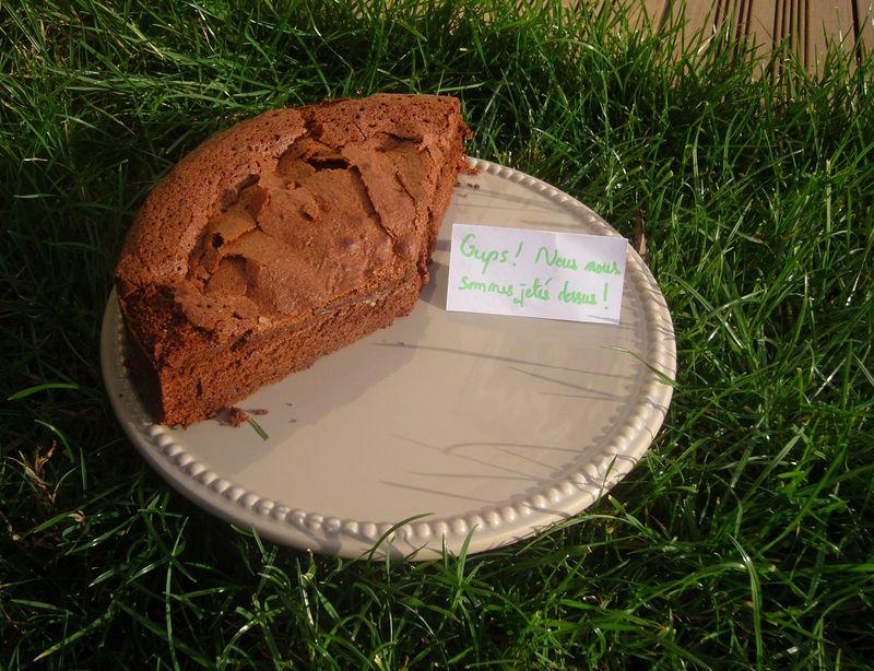 Gâteau au Chocolat de Brigitte