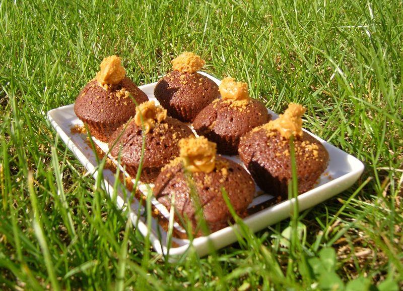 Cupcake Chocolat Speculoos V1