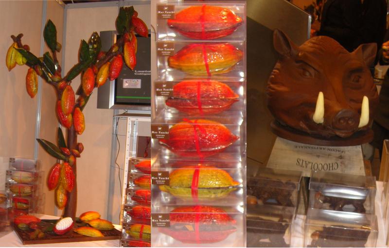 Max Vaucher Cacaoyer en chocolat  cabosses fourées têtes de sanglier