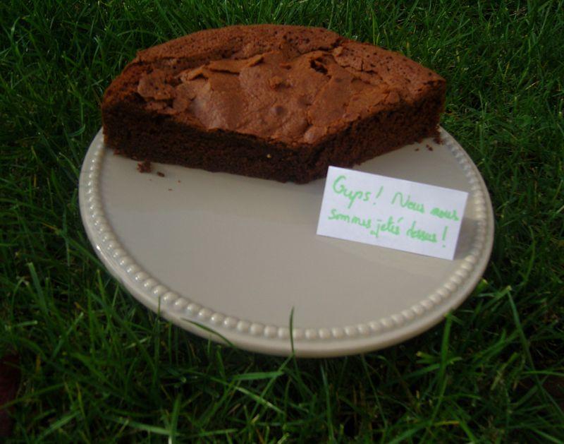 Gâteau au Chocolat de Brigitte V2