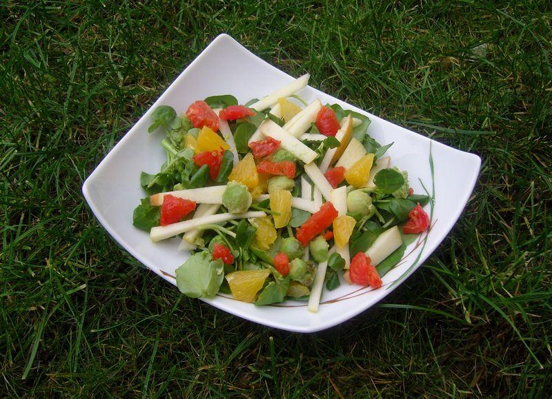Salade Vitamine Coeur de Tartine