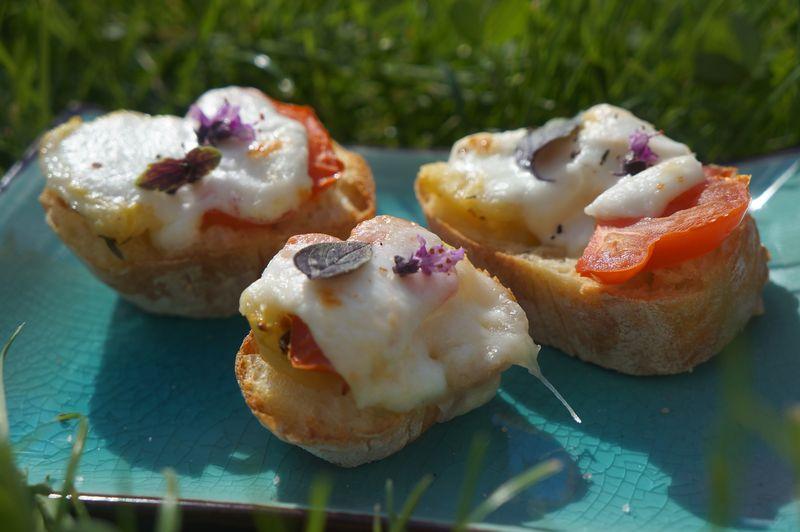Bruschetta Chaude Végétarienne Tomates Mozarella